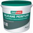 SILICANE PEINTURE 14L (P2)